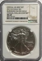 2013 W NGC MS69 BURNISHED SILVER AMERICAN EAGLE FROM THE ANNUAL DOLLAR COIN SET