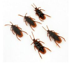 5pcs Cockroach Fake Insect Model Toys Funny Spoof Toy Party Fun Halloween Joke