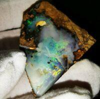 GELDANLAGE Boulder Opal aus Queensland/Australien! 252 ct./ FEUER! Premium Qual.