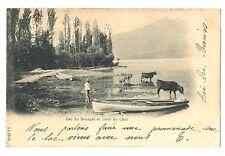 CPA 73 Savoie Lac du Bourget et Dent du Chat animé animaux barque