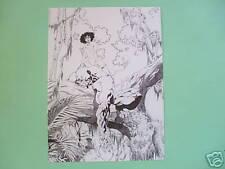 Affiche D'Falli E.A. bruno graff N&S noir et blanc
