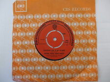 WB 7340 Peter Paul And Mary - Leaving On A Jet Plane / The House Song - 1969