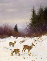 Oil painting wild animals little deer Fawn in winter snow landscape Hand painted