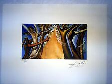 Salvador Dali Litografia 50 x 65 Bfk Rives Timbro a secco Firmata a Matita D261