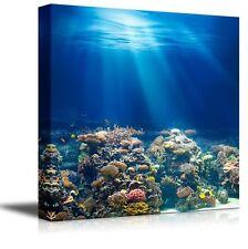 "Canvas- Coral Reef under the Ocean/Sea|Modern Home Decor Canvas Prints-24"" x 24"""