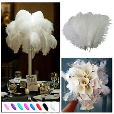 1/10x Wholesale High Quality Natural  Ostrich Feathers Wedding Party 15-30cm new