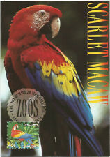 Bird Scarlet Macaw Australian Zoos Maximum Card Postmarked on First Day of Issue