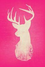 Incorniciato stampa-Rosa Stag HEAD (Picture cervi animale Bear FOX HORSE bird ART)