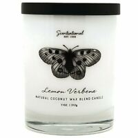 Scentsational Coconut Wax Blend 11oz Single Wick Medium Candle - Lemon Verbena