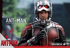 ANT-MAN / SCOTT LANG / PAUL RUDD~SIXTH SCALE FIGURE~HOT TOYS~MIB