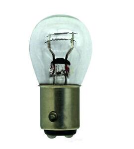 Tail Light Bulb Hella 7225