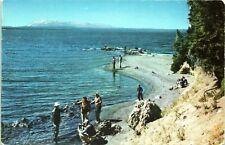 1950s Fishing Along Yellowstone Lake National Park Chrome Postcard AW