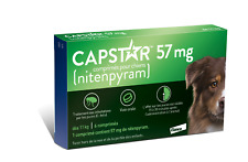 CAPSTAR Green 6 Tablets for Dogs over 25 lbs NEW VERSION- FREE SHIPPING