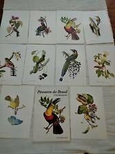 More details for 10 bird prints pagentry of brazilian birds j th descourtilz portfolio of plates
