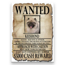 Keeshond Wanted Poster Fridge Magnet New Dog