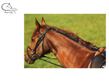 Ekkia DAISY Grass REIN Web Horse Pony STOPS Ponies Eating Grass LEATHER FREE P&P