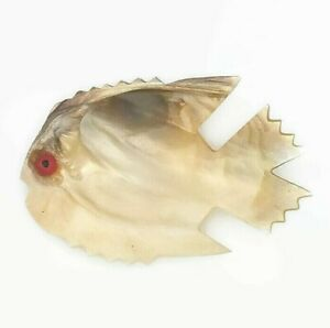 Fish Shaped Carved Shell Trinket Dish Mother of Pearl