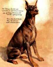 Doberman Pinscher - Vintage Dog Art Print - Poortvliet