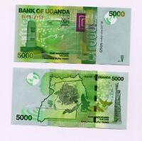Uganda, 5000  Shillings Banknote, 2017, P-51 (51e), UNC > Birds