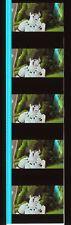 Princess Mononoke Hayao Miyazaki 35mm Film Cell strip very Rare h13