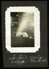 New listing Antique Photo Black Women Sleeping on Lawn African American Unusual 1939