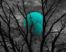 Turquoise Wall Pictures, Tree Moon Modern Turquoise Bedroom Home Wall Art Decor