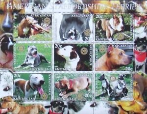 Kyrgyzstan( local post)  - DOGS-Staffordshihre Terrier-,1M/Sh, MNH**, KPLR 2A/L