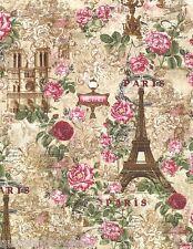 Paris Rendezvous Eiffel Tower Notre-Dame Timeless Treasures Crm Fabric 1/2 Yar