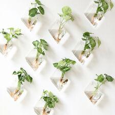 10Pcs Wall Hanging Plant Terrarium Glass Planter Flower Vase Pot Diamond +Hooks