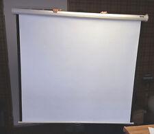 Da-Lite 60'' X 60'' Projection Screen