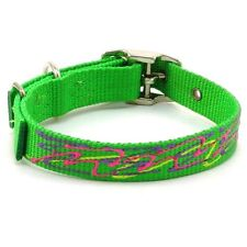 "HAMILTON Hand-Painted Squiggles ST Nylon Dog Collar, 16"" x 3/4"", Lime Green"