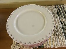 Countryside Dinner Plates Set of 8 cream- NEW