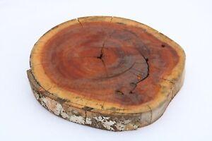 Mahogany Epoxy Exotic Live Edge Wood Round Tree Slice Slab Lumber 1.8x12x12