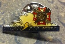 VFW STORM FOR NORM pin badge