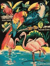 """Tropical Hobbyland-Birds"" digital open ed, Vintage Sign - Recreated 24x18"