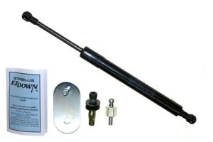 Hatch Lift Support-Tailgate Lift Support Sachs SG304902EZ