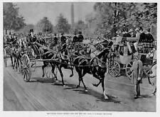 HORSES TANDEM PARADE COACHES CENTRAL PARK NEW YORK CITY