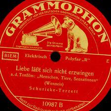 SCHURICKE-TERZETT Liebe läßt sich nicht erzwingen / The Donkey's Serenade  S8539