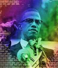 Malcolm X canvas print wall  hanging, Size50x60 cm uv protected