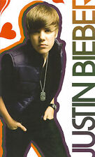 JUSTIN BIEBER wall stickers 15 large decals scrapbook stickups music hearts