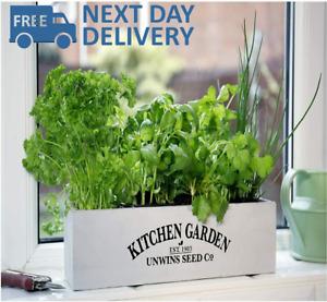 Herb Kitchen Garden Kit Indoor Windowsill Balcony Box Wooden Pots Planter Seeds