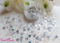 Nail Art Chunky *Ice Queen* Xmas Silver Snowflake Hex Mix Glitter Spangle Pot