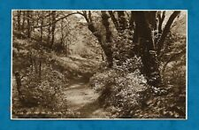 C1920s RP PC DIXCART VALLEY, SARK, CHANNEL ISLANDS