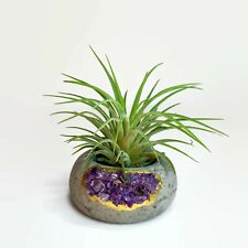 Amethyst Air Plant Holder Crystal Geode Candle Holder Crystal Pot