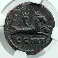MACRINUS 217AD Parium MYSIA Authentic Ancient Roman Coin CAPRICORN NGC i78437