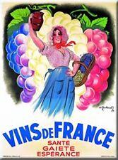 French Wine Kitchen Refrigerator Magnet Vins de France
