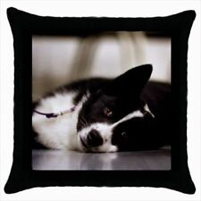 Karelian Bear Dog Throw Pillow Case