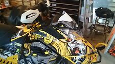 Custom white  skidoo xs/xm windshield