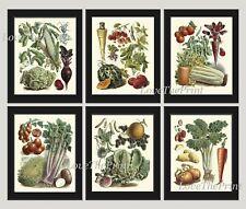 Unframed Botanical Print Set 6 Antique Vegetables Kitchen Dining Room Wall Art