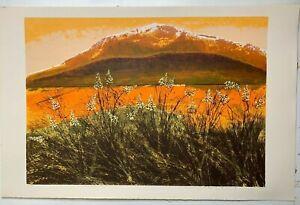"""Howard Bradford Mid-Century Signed Serigraph Print Titled """"Desert Floor"""" 1982"""